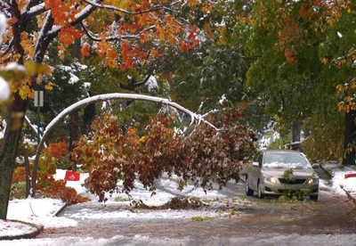 Schnee uff die Baame in State College.