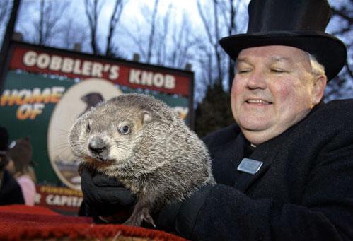 Der Phil, graad aus seim Loch in Punxsutawny.